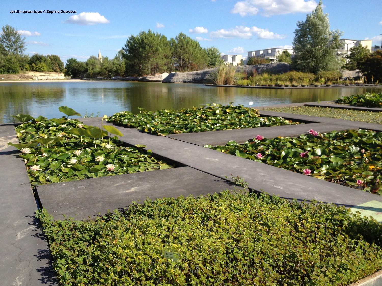 Photo Jardin Zen Chez Particulier les bordelais et leurs jardins, une longue histoire d'amour