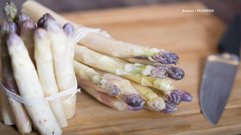 L 39 asperge du blayais tr sor blanc girondin gastronomie tourisme sud ouest - Culture de l asperge ...