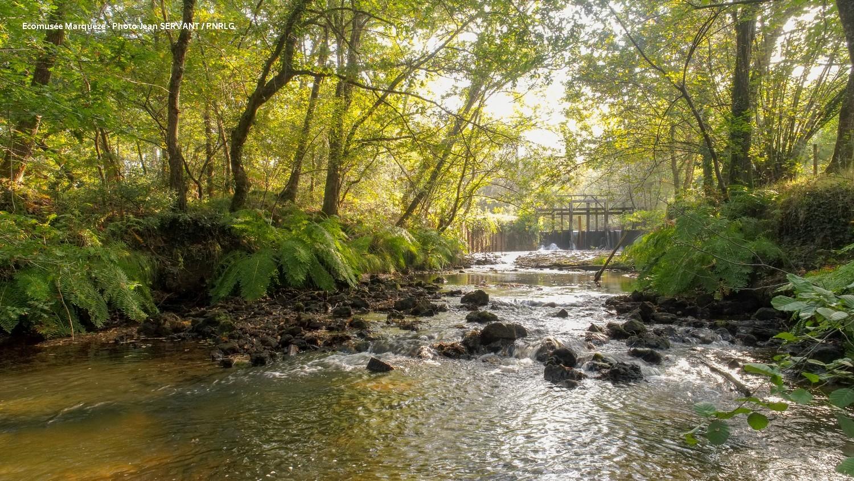 Construire Pres D Un Ruisseau Écomusée de marquèze : rénovation du barrage et construction