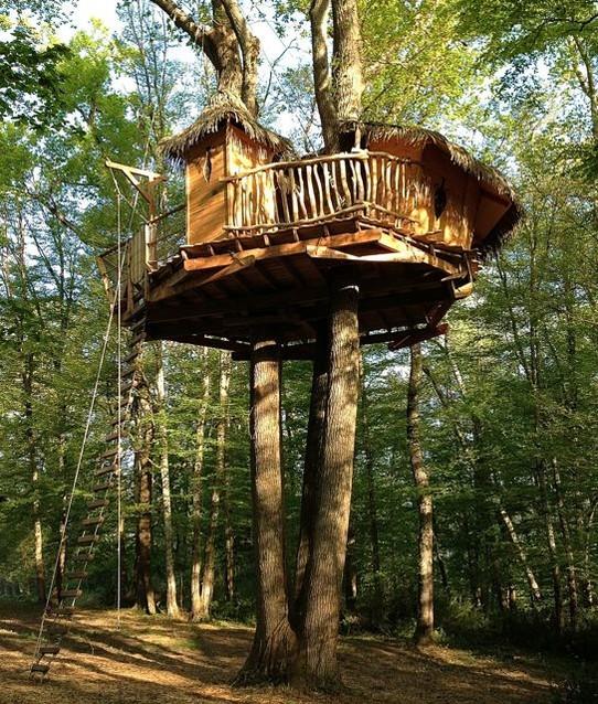 Les Cabanes De La Romaningue H Bergement Insolite Dans Les Arbres Partance Tourisme